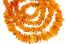 Baltic amber, necklace chips, 7.5-14mm