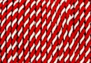 Snur bicolor 3mm, alb- rosu - x3m