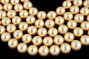 Perle Swarovski, gold, 6mm - x100