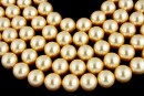 Perle Swarovski, gold, 12mm - x10