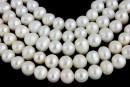 Perle de cultura - 6-8mm, alb