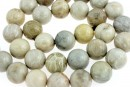 Coral fossil, round, 12mm