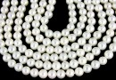 Perle Mallorca, rotund, alb, 5mm