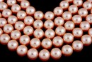 Perle Swarovski, rose peach, 6mm - x100